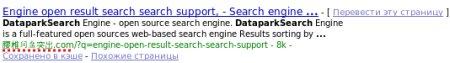 google-idn.jpg